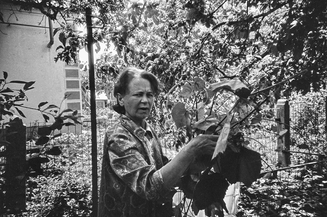 Портрет мамы в саду. Брест. 1985 год.