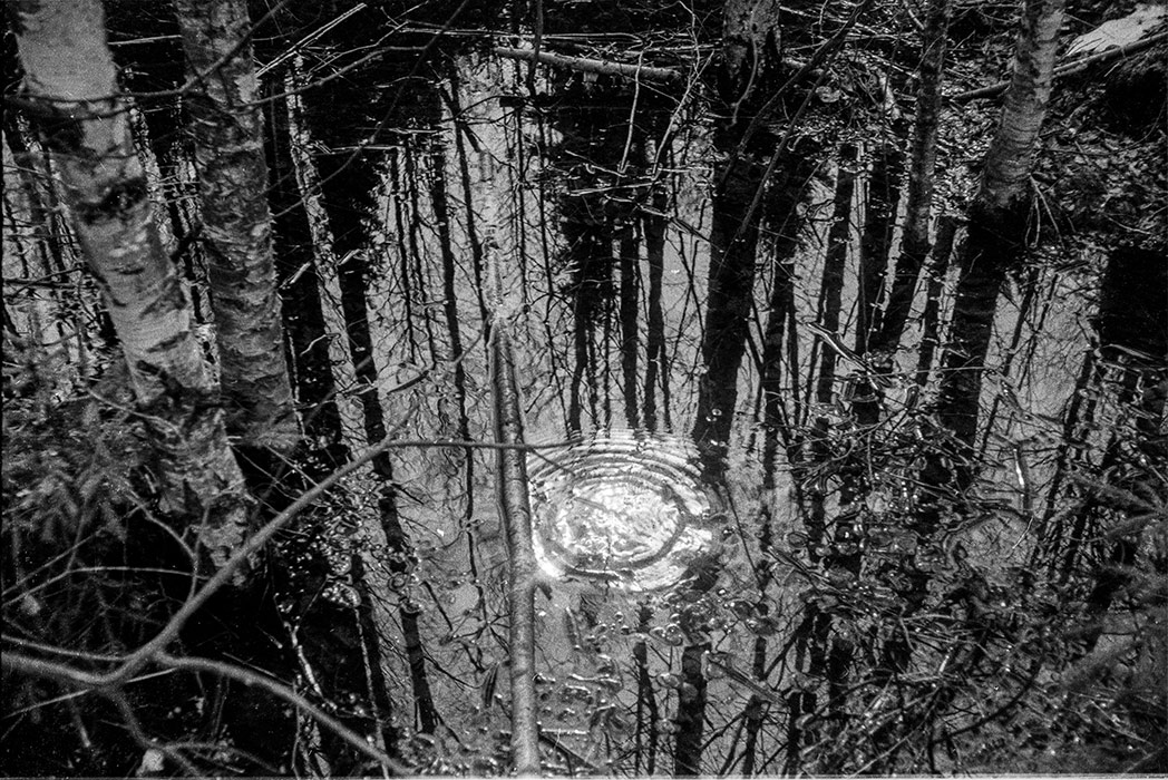 Отражение. 1983г.