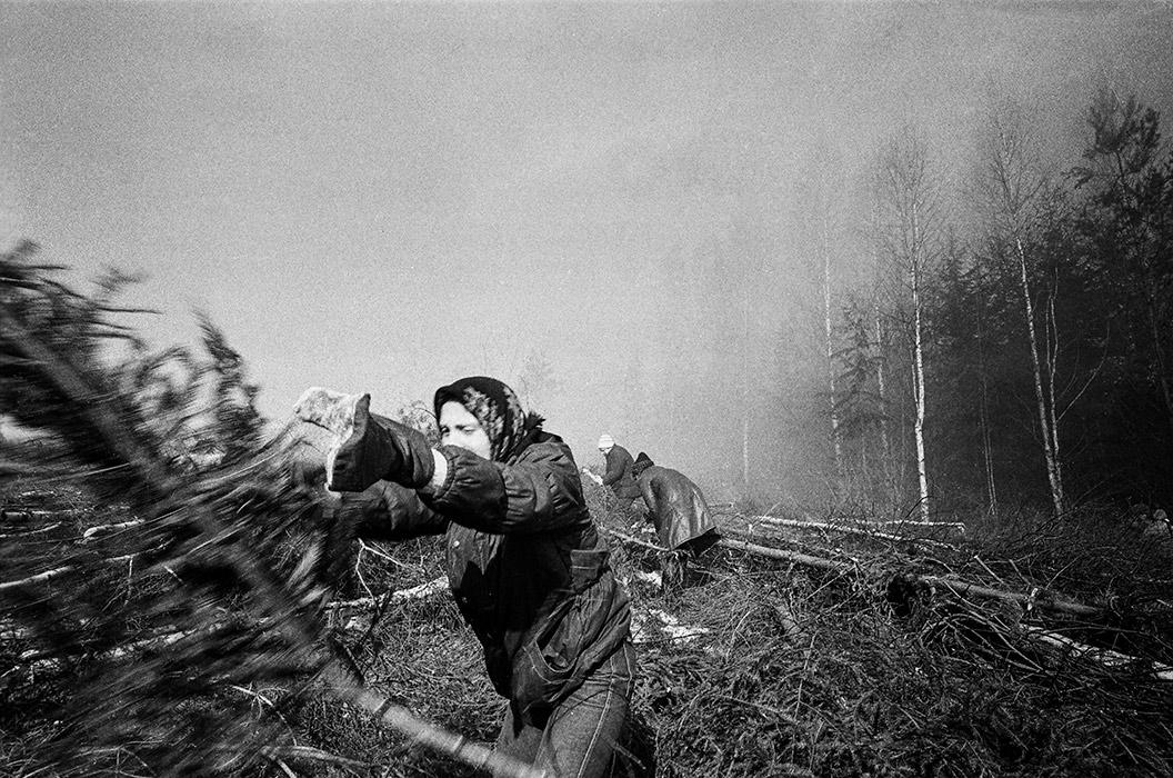Расчистка трассы. Минский р-н, 1984 год