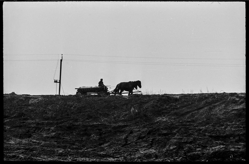 Встреча на дороге. Минский р-н, 1982 год