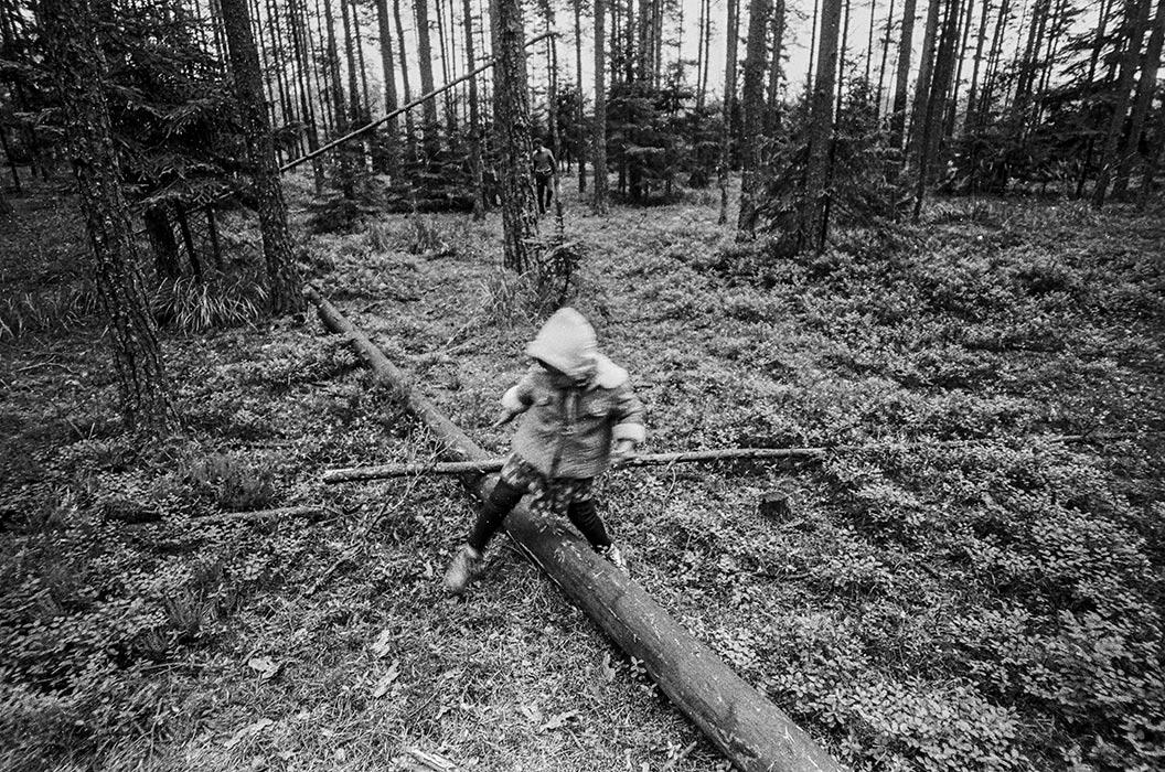 Сбор ягод на турбазе. Минский р-н, 1987 год
