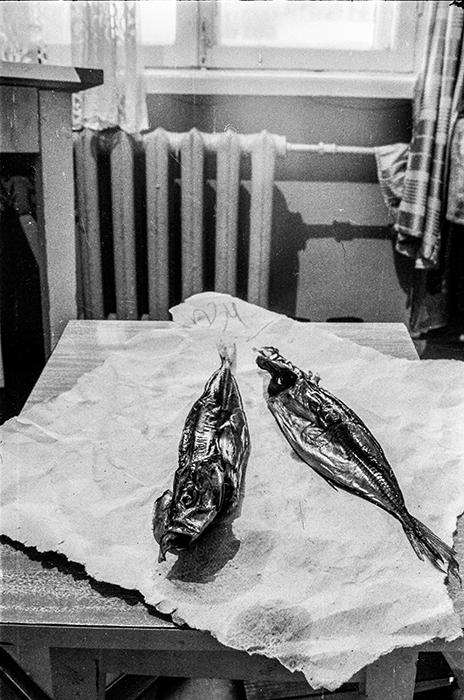 Рыба. Минск, 1984 год