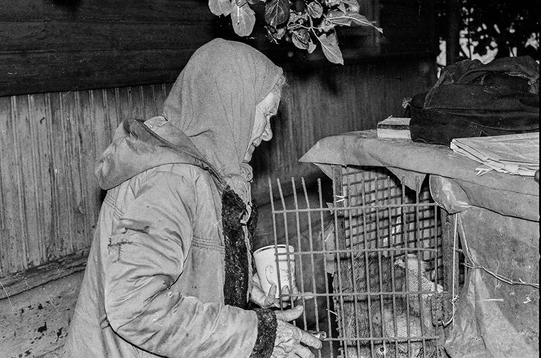 Бабушка Вера и цыплята. 1986 год