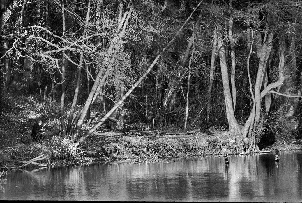 Лесное озеро. Витебская обл. Середина 80-х
