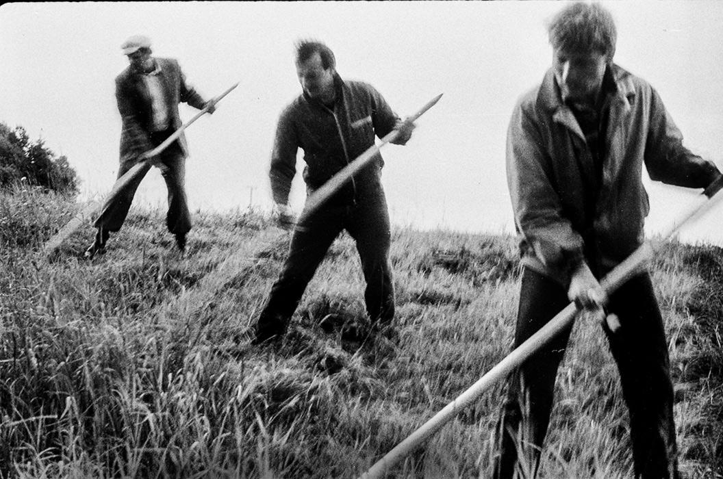 На субботнике конторские работники обкашивают траву на откосах дорог. Начало 80-х